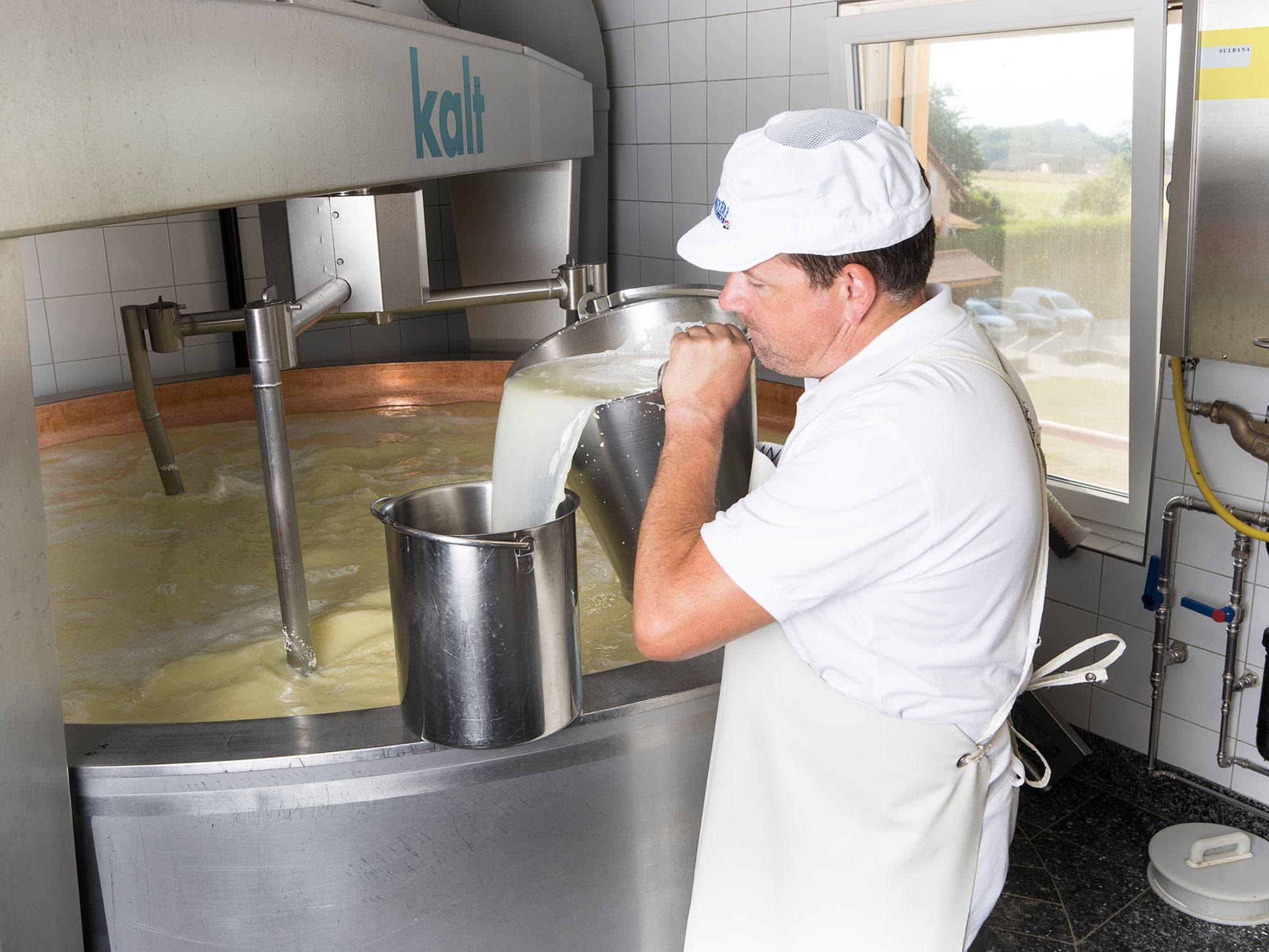 portrait corporate d'un fromager dans une entreprise en train de verser du lait dans une cuve