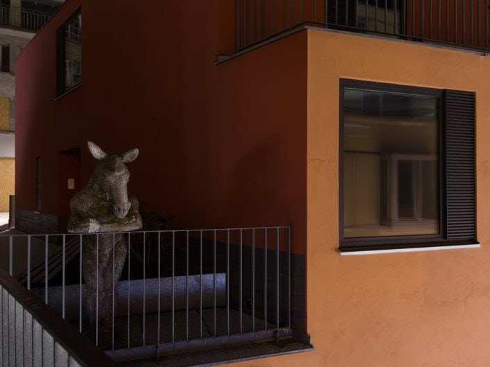 âne debout en train de regarder au-delà d'une barrière